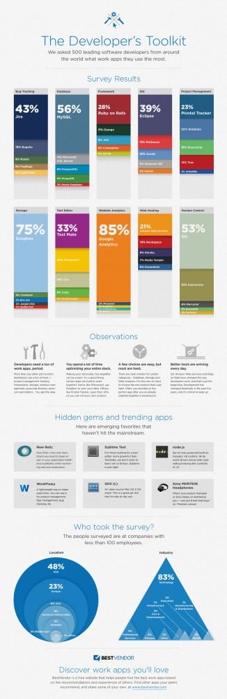 Developer Infographic 2011